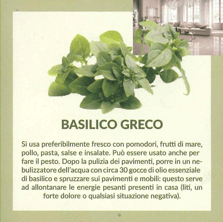 basilicogreco