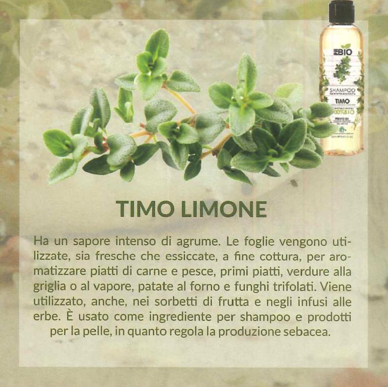 timolimone